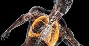 Entendendo os problemas respiratórios