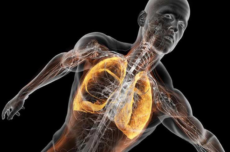 Problemas respiratórios, pulmão