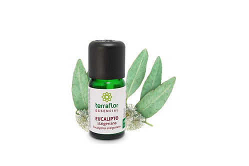 Óleo Essencial Eucalipto stageriana 10ml