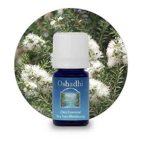oleo essencial Tea Tree (melaleuca) 5 ml oshadhi