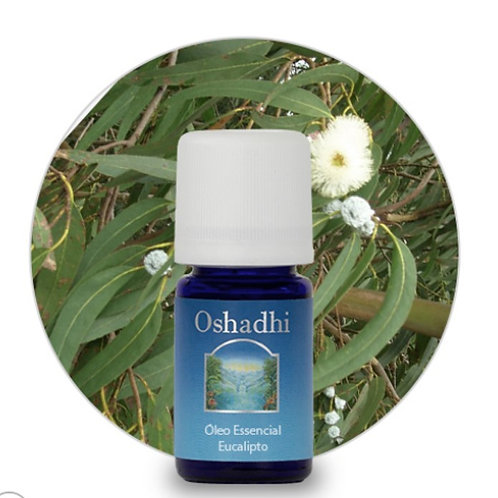 oleo essencial Eucalipto Glóbulos 5ml oshadhi