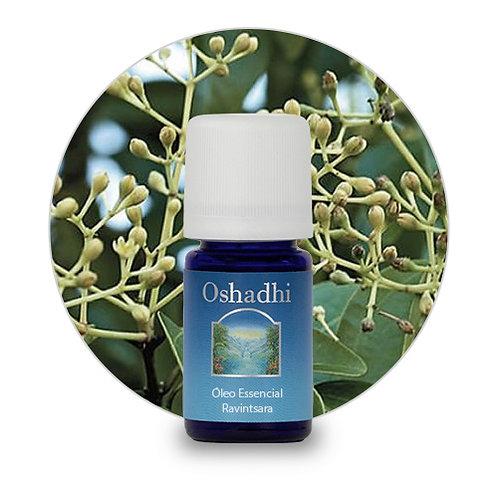 oleo essencial Ravintsara 5 ml oshadhi