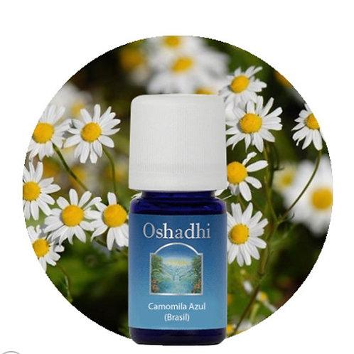 oleo essencial Camomila azul Brasil 5ml Oshadhi