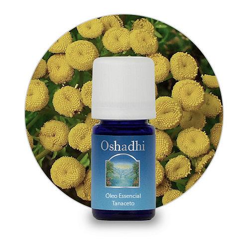 oleo essencial Tanaceto 5 ml oshadhi