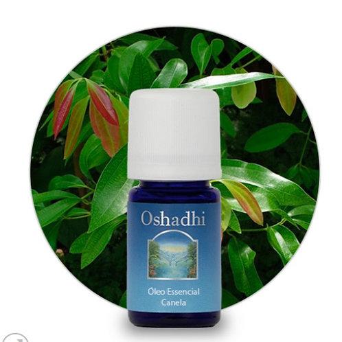 oleo essencial Canela Folhas 5ml Oshadhi