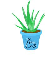 Viva Logo (1).png