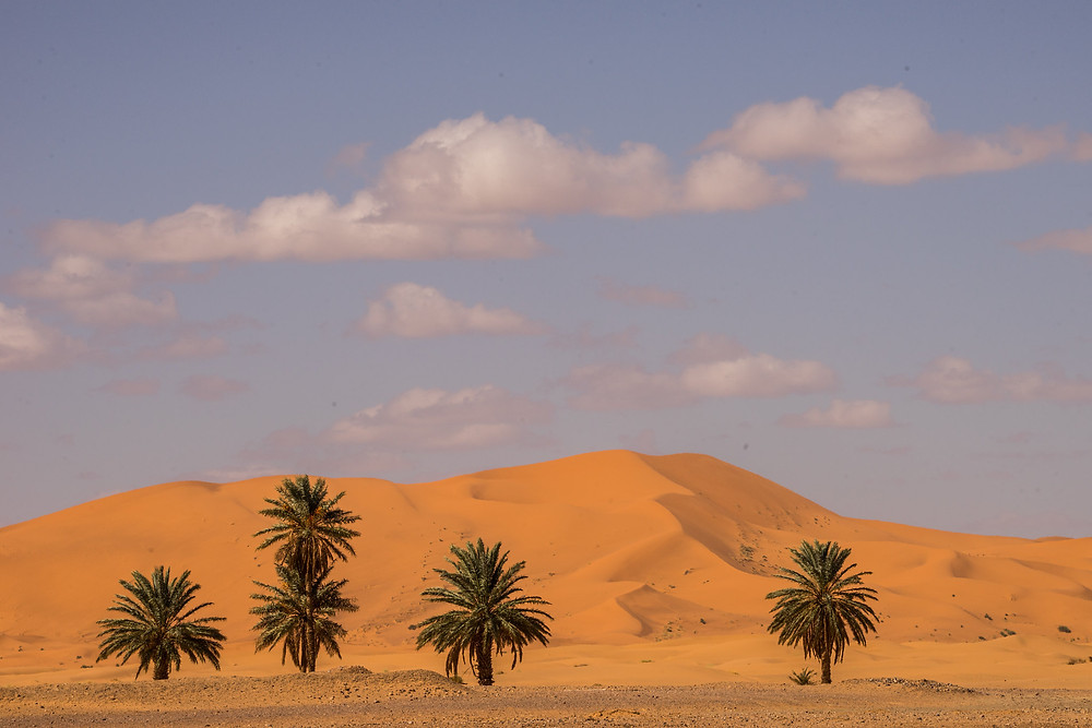 Merzouga and the Sahara dunes morocco