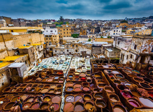 Inside the traditional and colorful leather tanneries of Fez, Morocco