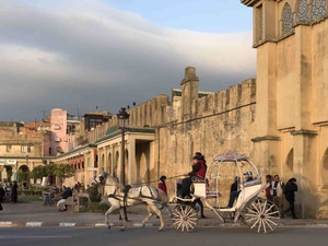Meknes city   A Moroccan pearl worth visiting