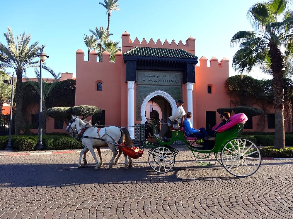 Al-mamounia marrakech medina