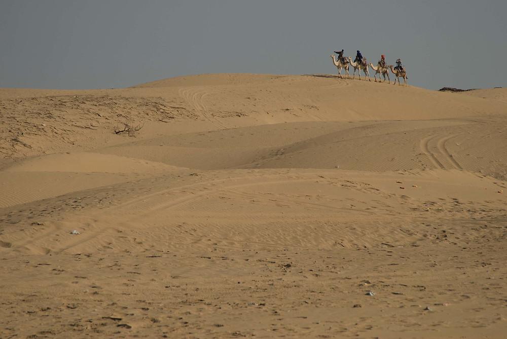 essaouira desert