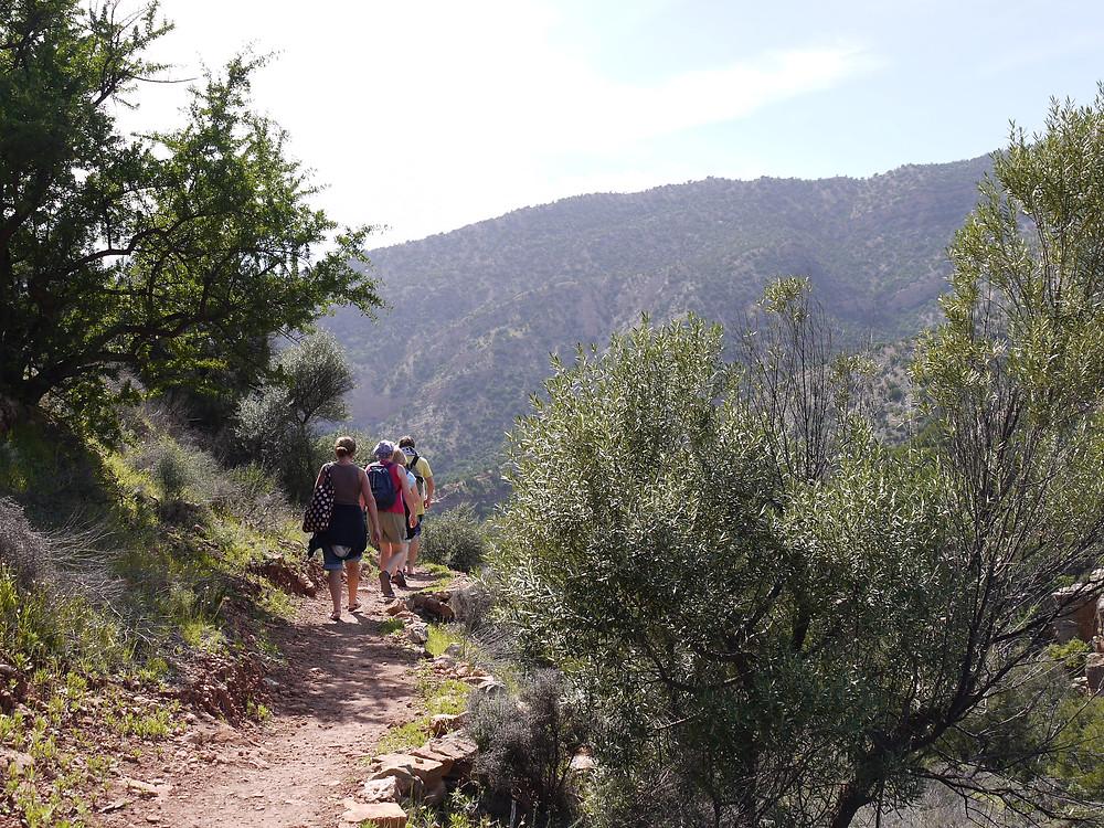 paradise valley agadir morocco