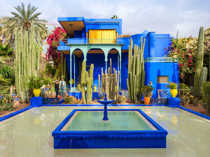 Majorelle Garden | The most beautiful garden in Marrakech, Morocco