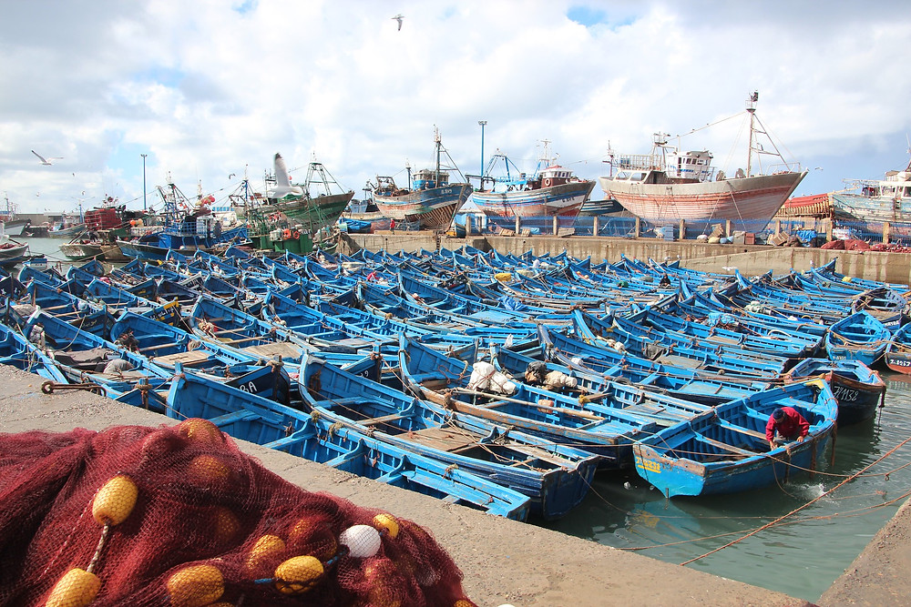 The fishing port of essaouira