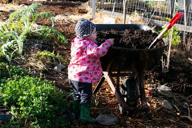 gareau- 20191124-community garden-3267.j