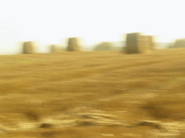 Cyclic Landscapes (2010)