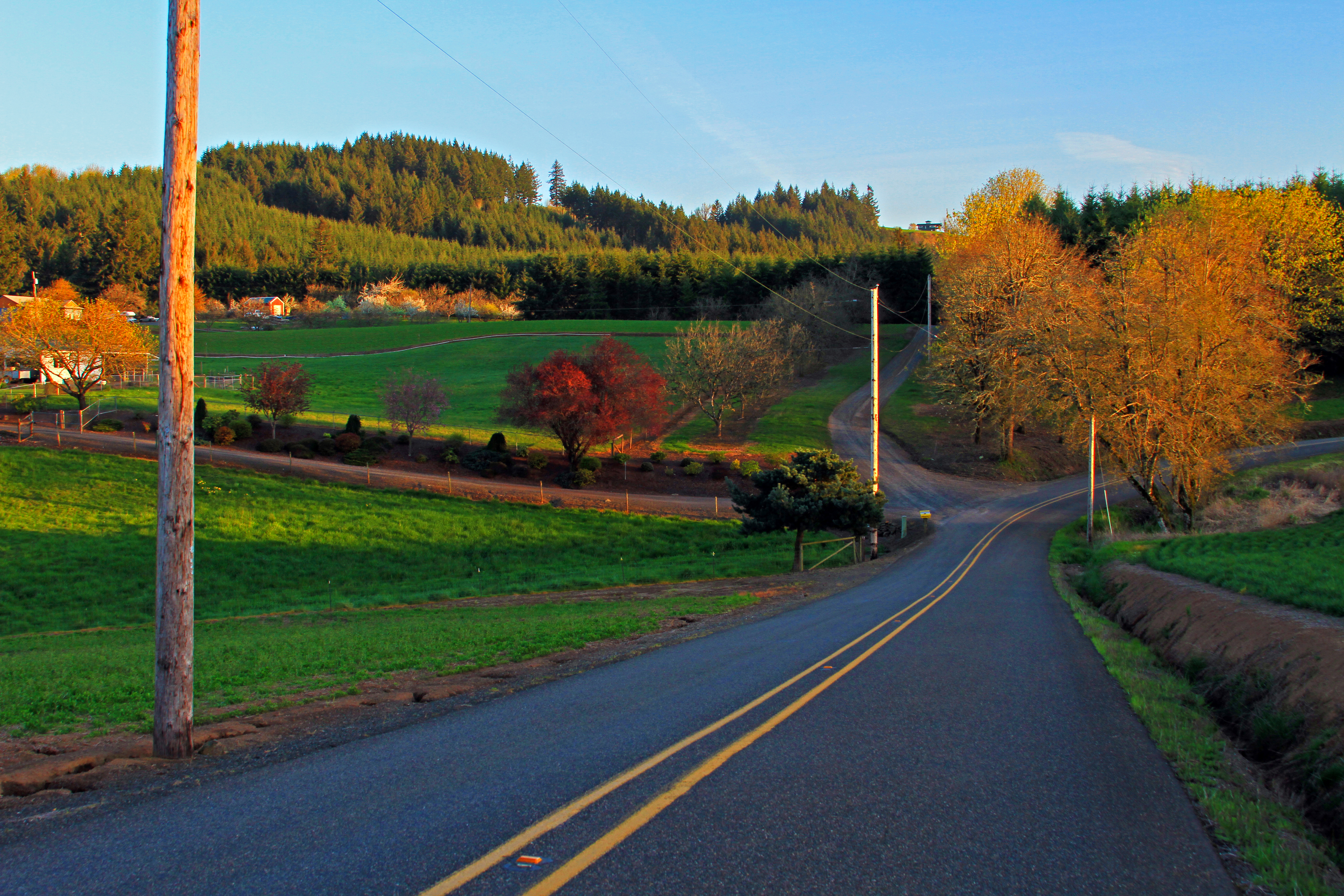 Beautiful Oregon Country Road