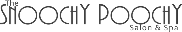 wix logo text.png