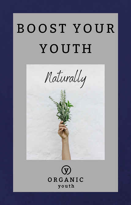 Boost Your Youth E-Book Title Page.png