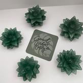 Succulent Crystals Green Aventurine.jpg