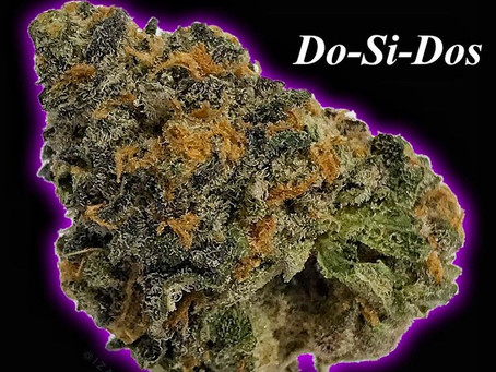 Do-Si-Dos Strain: Doughy Aromas And Relaxing Highs