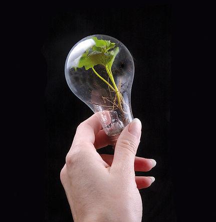 инновации nolte
