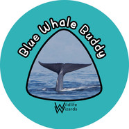 Blue whale buddy.jpg