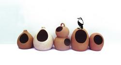 Joao-de-Barro Collection