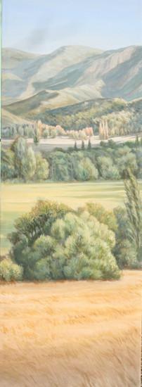 Châtillon en Diois; 1;50m 0;50m