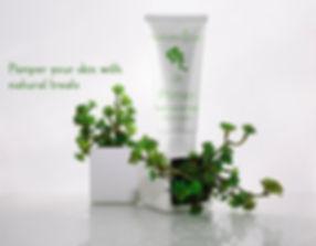 Nature up primer 100% organic | osiyanbeauty