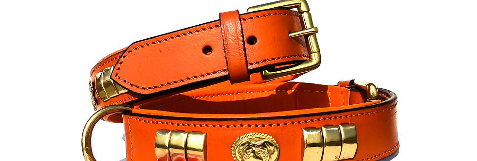 STAFFY STAFFORDSHIRE LEATHER DOG FACE COLLAR BROWN COLOUR WITH BRASS FITTING