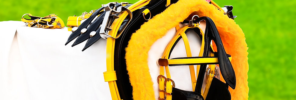QUICK HITCH BIOTHANE HORSE DRIVING HARNESS YELLOW & BLACK COLOUR COMBINATION