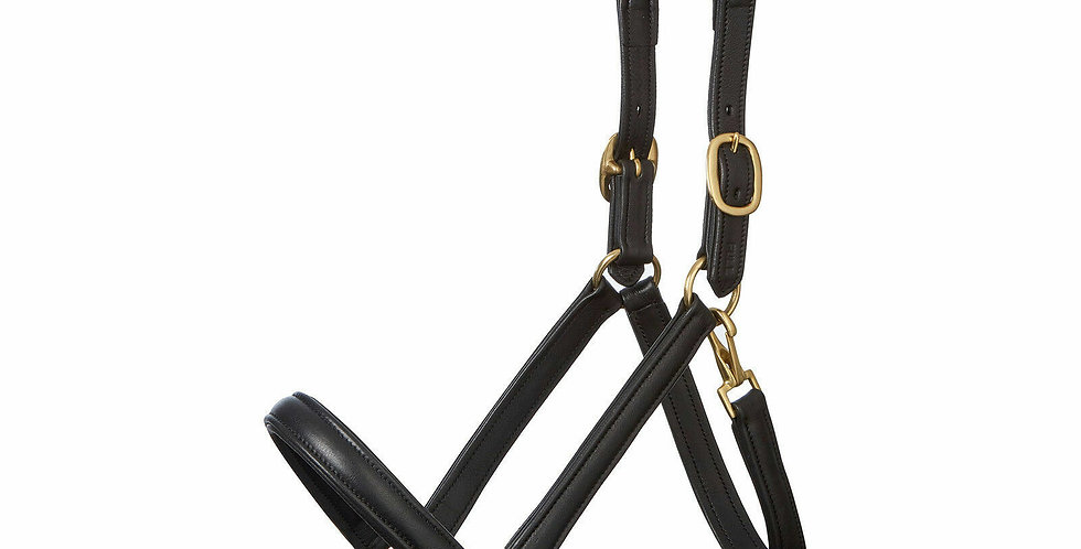 LEATHER HEAD COLLAR FULLY RAISED & PADDED, BLACK & BROWN COLOR