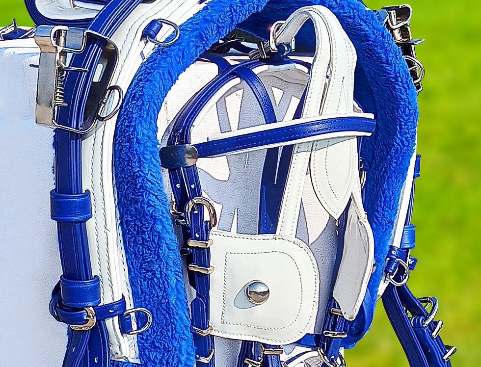 QUICK HITCH BIOTHANE HORSE DRIVING HARNESS BLUE & WHITE COLOR COMBINATION