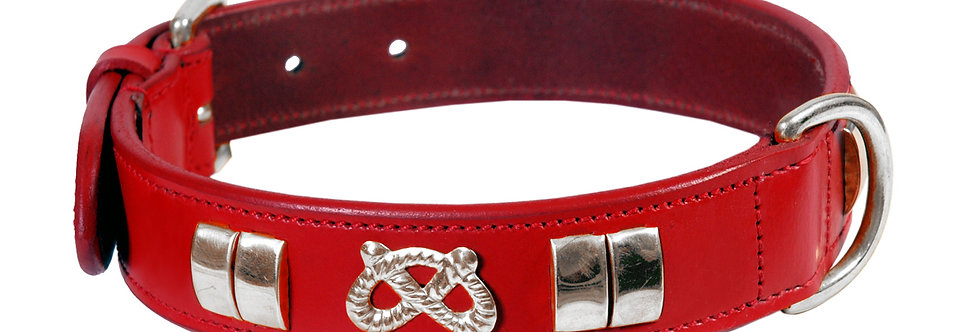 STAFFY LEATHER SMALL DOG COLLAR, CHROME FITTINGS