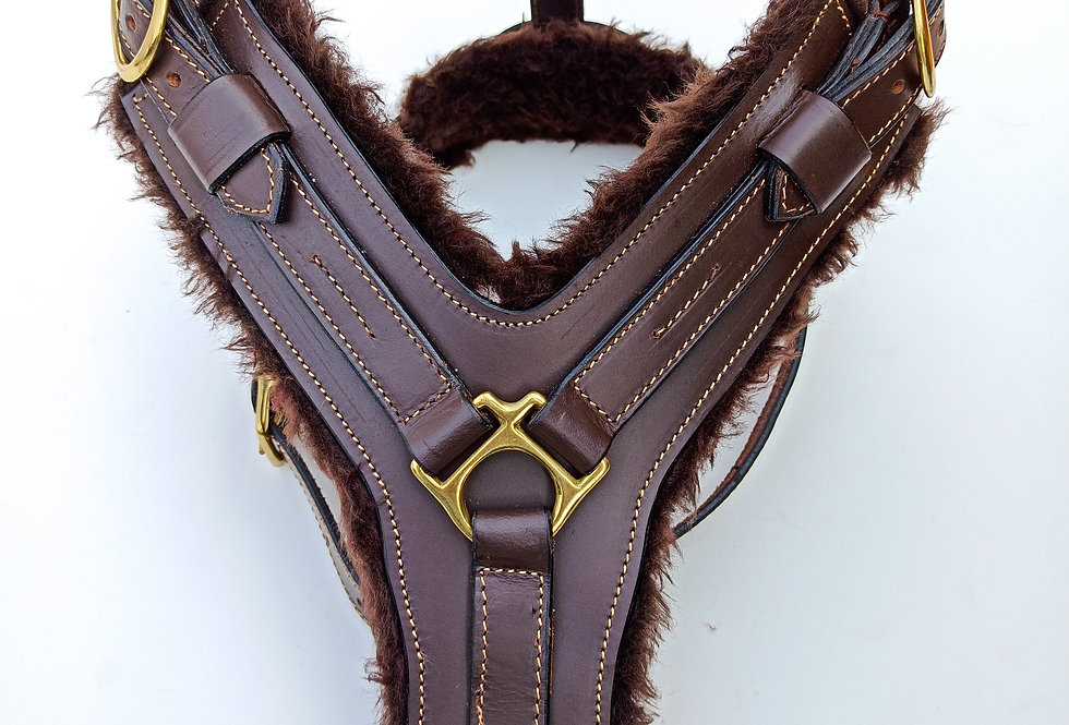 LEATHER DOG HARNESS FOR GREAT DANE, BRASS FITTED HARDWARE, BLACK & BROWN COLOUR