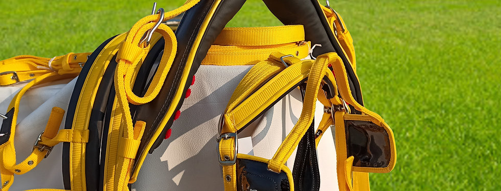 WEBBING HARNESS TWO TONE FOR SINGLE HORSE, YELLOW/BLACK