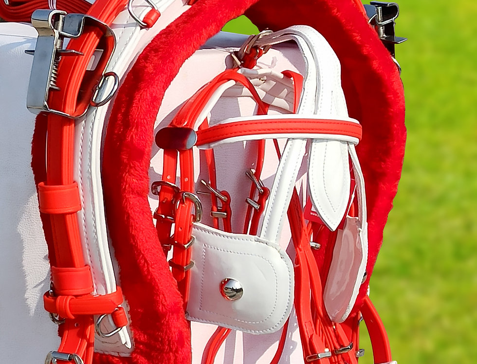 QUICK HITCH BIOTHANE HORSE DRIVING HARNESS RED & WHITE COLOUR
