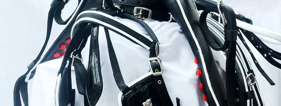 WEBBING HARNESS TWO TONE FOR SINGLE HORSE, BLACK/WHITE
