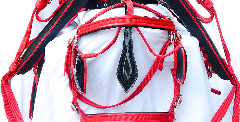 WEBBING HARNESS TWO TONE FOR SINGLE HORSE,RED/BLACK