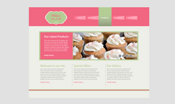 website option 3
