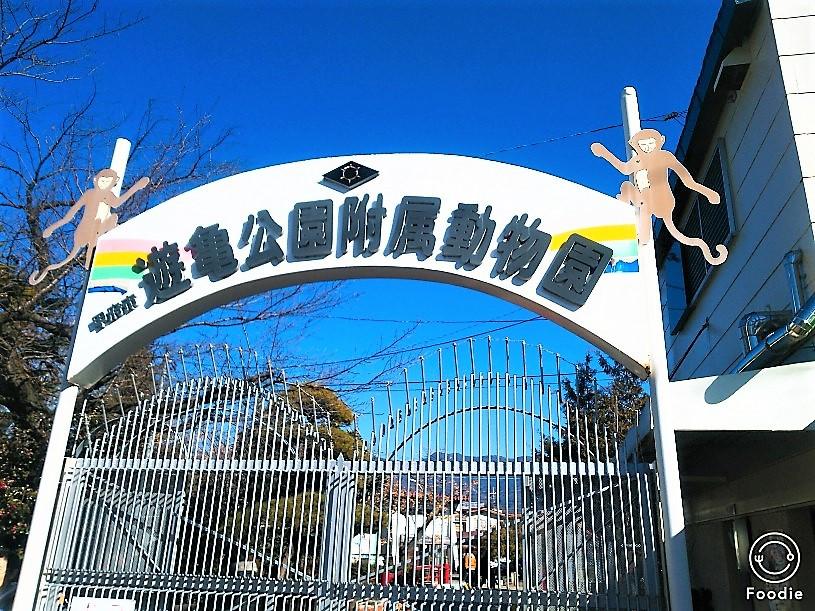 全国で四番目に古い歴史がある動物園。