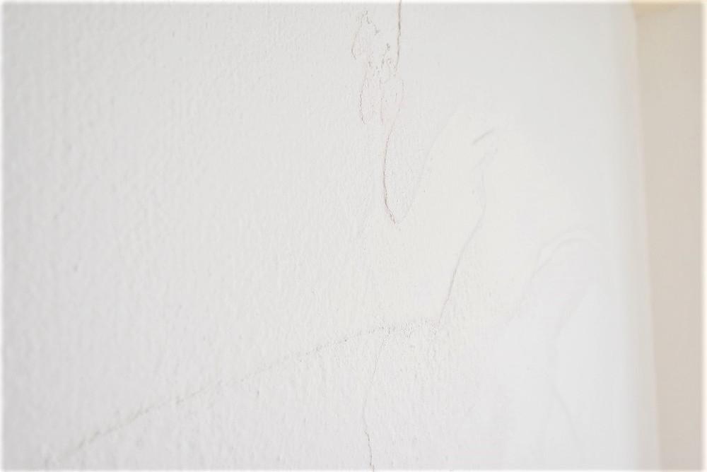 自然素材の漆喰