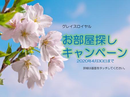 春のお部屋探しキャンペーンは、4月末日まで。