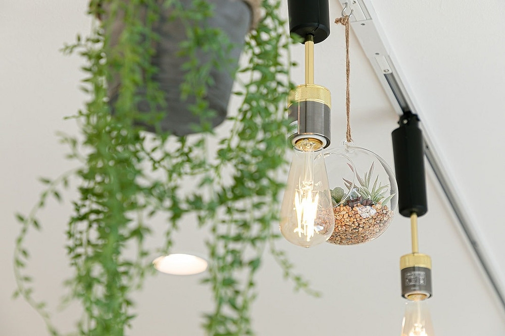 カフェを連想させるようなおしゃれな照明が、グレイスロイヤルには設置されています