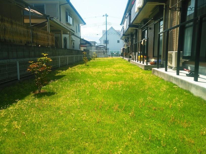 芝をきれいな状態に保つには、氏ばかりが大切です。