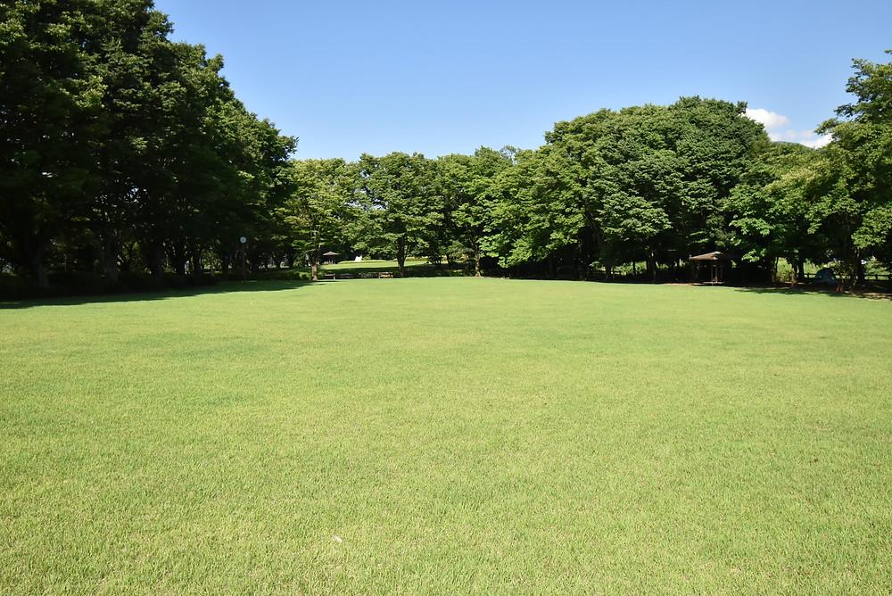 自然に寄り添った公園が近くにあるので、お子さんはとても喜びます。