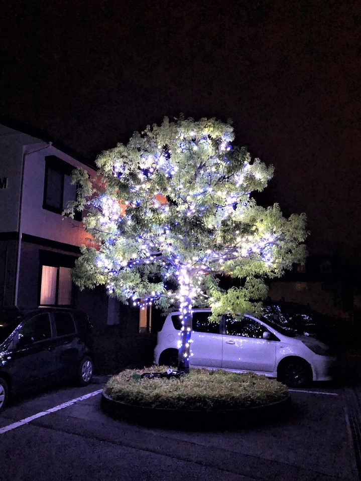 LEDイルミネーションなので、見た目以上にとても明るいです