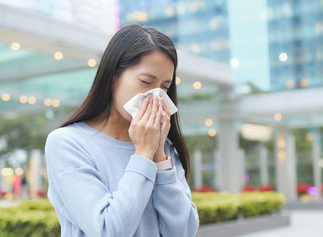 秋の花粉症対策に。自然素材の漆喰なら、室内の花粉飛散を抑えます。