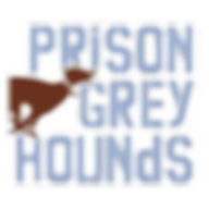 prison grey hounds.png
